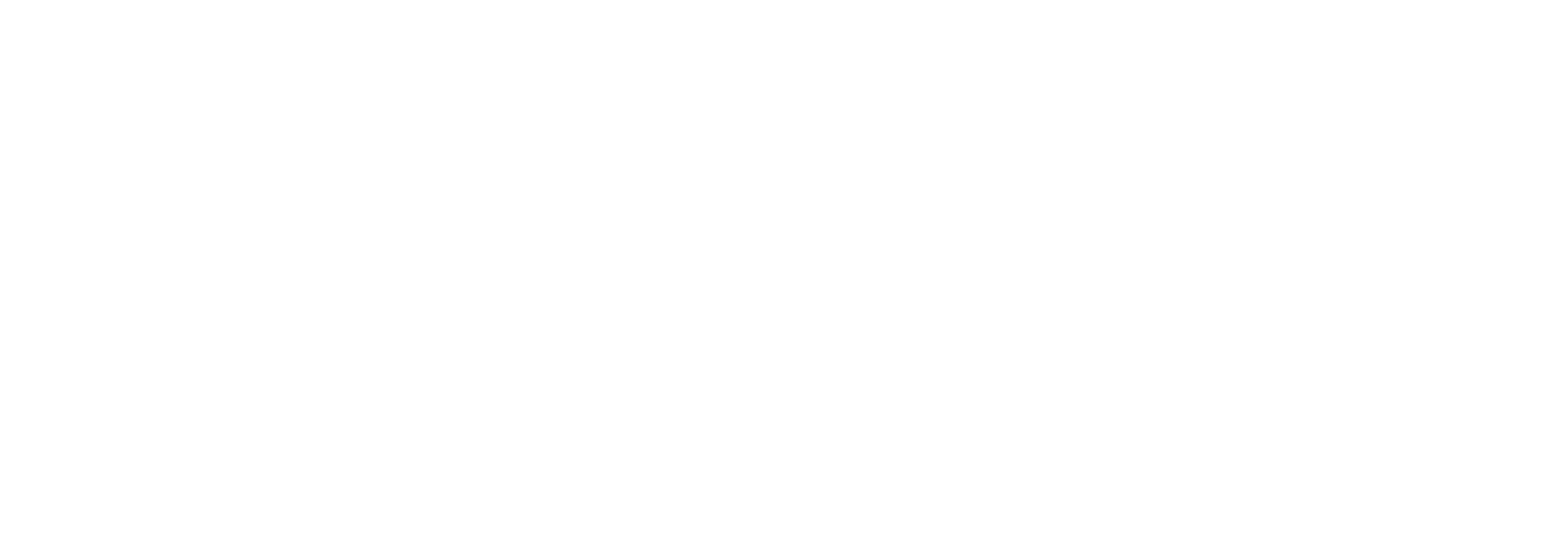 Life-Cycle Financing Logo wht